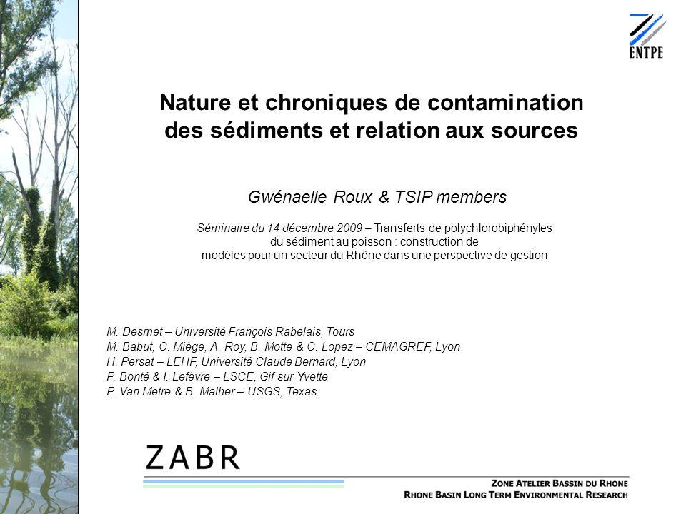 Nature et chroniques de contamination des sédiments et relation aux sources Gwénaelle Roux & TSIP members M. Desmet – Université François Rabelais, To