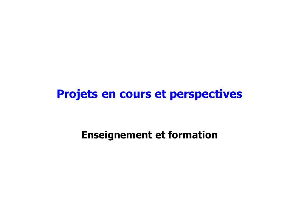 Projets en cours et perspectives Enseignement et formation
