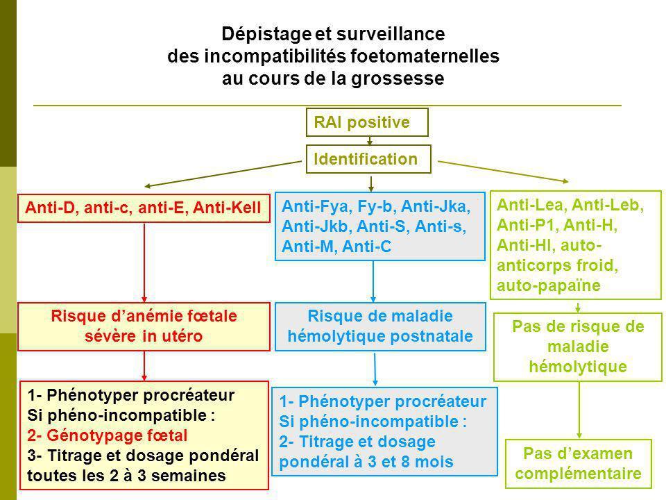 Grossesse avec allo-immunisation anti-D Schéma de prise en charge Anti-D < 1 µg/ml (250 UCHP/ml) - Surveillance échographique standard - Dosage + titrage anti-D tous les 15 jours à partir de 18 SA Anti-D > 1 µg/ml - Surveillance hebdomadaire dès 18 SA écho + vélocimétrie doppler - Dosage + titrage anti-D tous les 15 jours à partir de 18 SA Génotypage RHD fœtal sur sang maternel à partir de 12 SA Titrage ET Dosage Si fœtus RHD positif RAI positive au premier trimestre Identification = Anti-D Si fœtus RHD négatif Surveillance levée