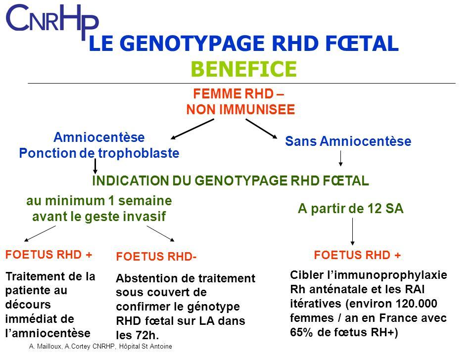 A. Mailloux, A.Cortey CNRHP, Hôpital St Antoine LE GENOTYPAGE RHD FŒTAL BENEFICE FEMME RHD – NON IMMUNISEE A partir de 12 SA Amniocentèse Ponction de
