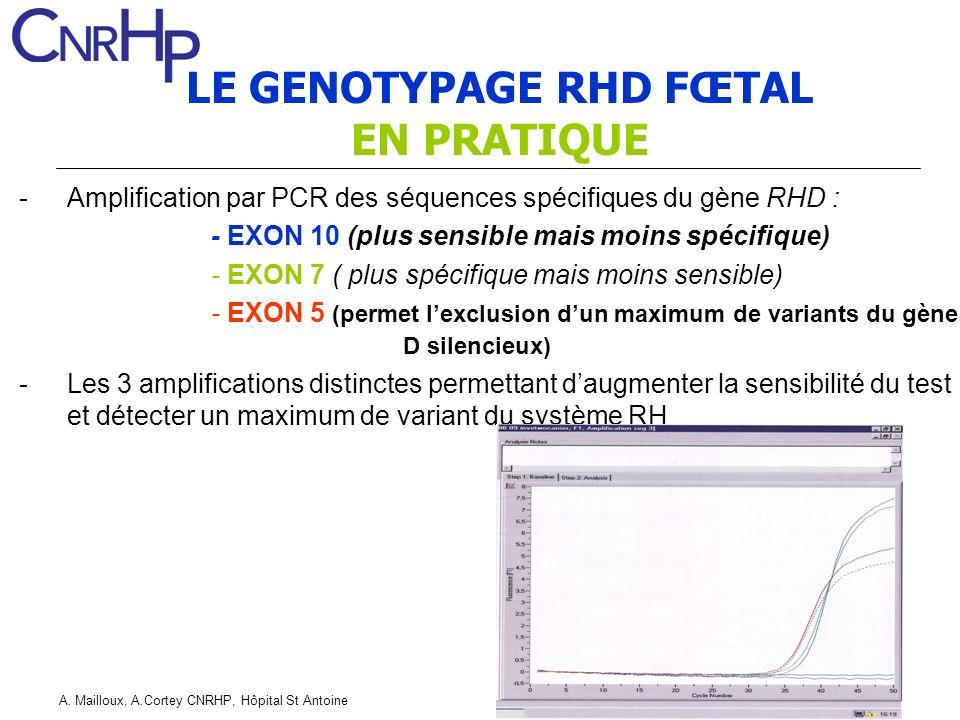 A. Mailloux, A.Cortey CNRHP, Hôpital St Antoine LE GENOTYPAGE RHD FŒTAL EN PRATIQUE -Amplification par PCR des séquences spécifiques du gène RHD : - E