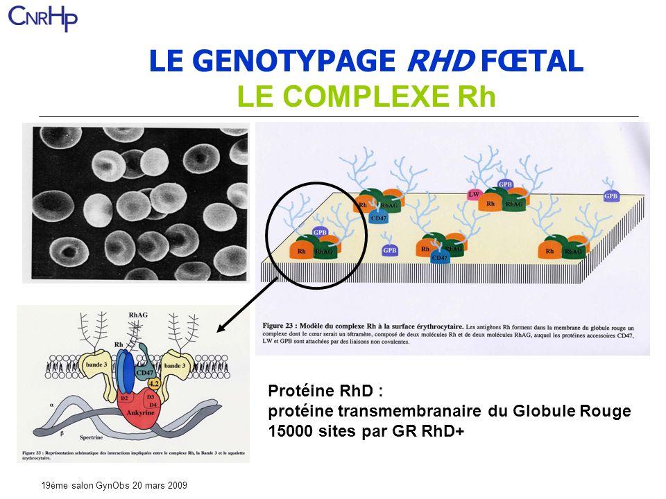 19ème salon GynObs 20 mars 2009 LE GENOTYPAGE RHD FŒTAL LE COMPLEXE Rh Protéine RhD : protéine transmembranaire du Globule Rouge 15000 sites par GR RhD+