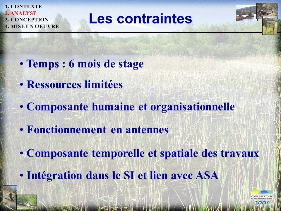 Les contraintes Fonctionnement en antennes Temps : 6 mois de stage Composante humaine et organisationnelle Composante temporelle et spatiale des trava