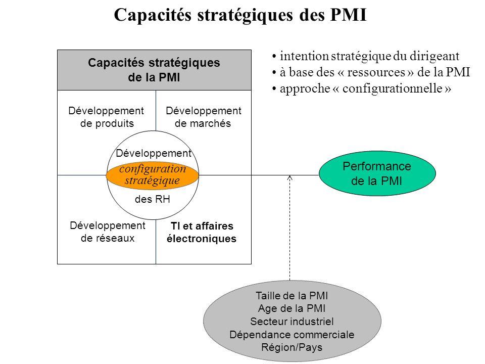 Performance de la PMI Taille de la PMI Age de la PMI Secteur industriel Dépendance commerciale Région/Pays Capacités stratégiques des PMI des RH Dével