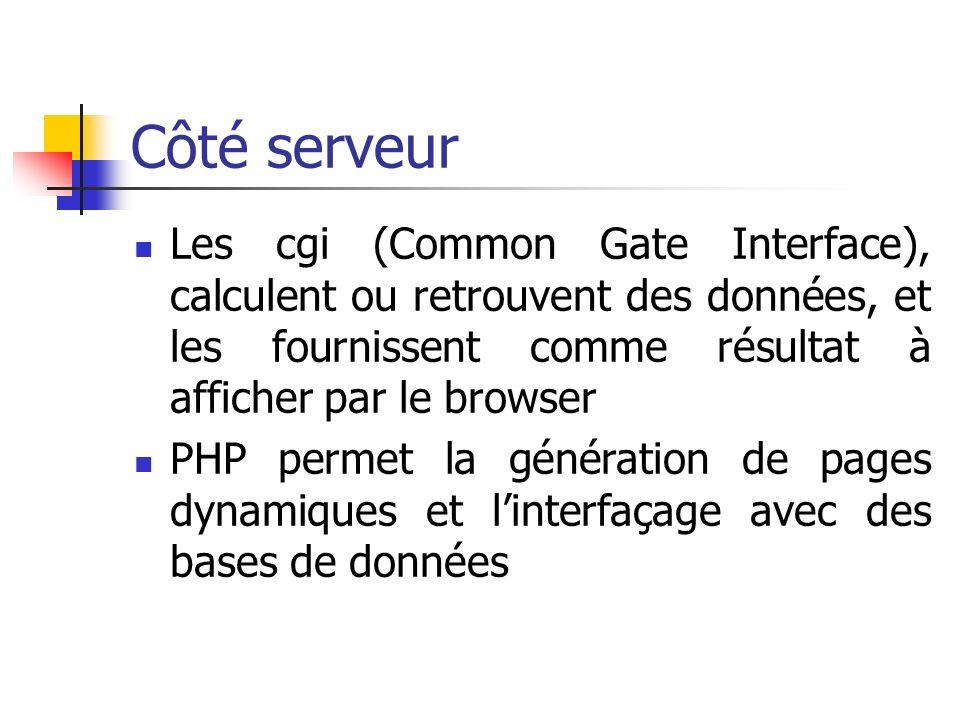 Côté serveur Les cgi (Common Gate Interface), calculent ou retrouvent des données, et les fournissent comme résultat à afficher par le browser PHP permet la génération de pages dynamiques et linterfaçage avec des bases de données