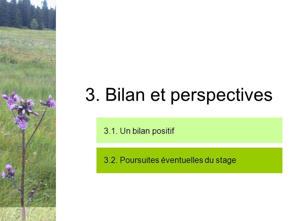 3. Bilan et perspectives 3.1. Un bilan positif 3.2. Poursuites éventuelles du stage