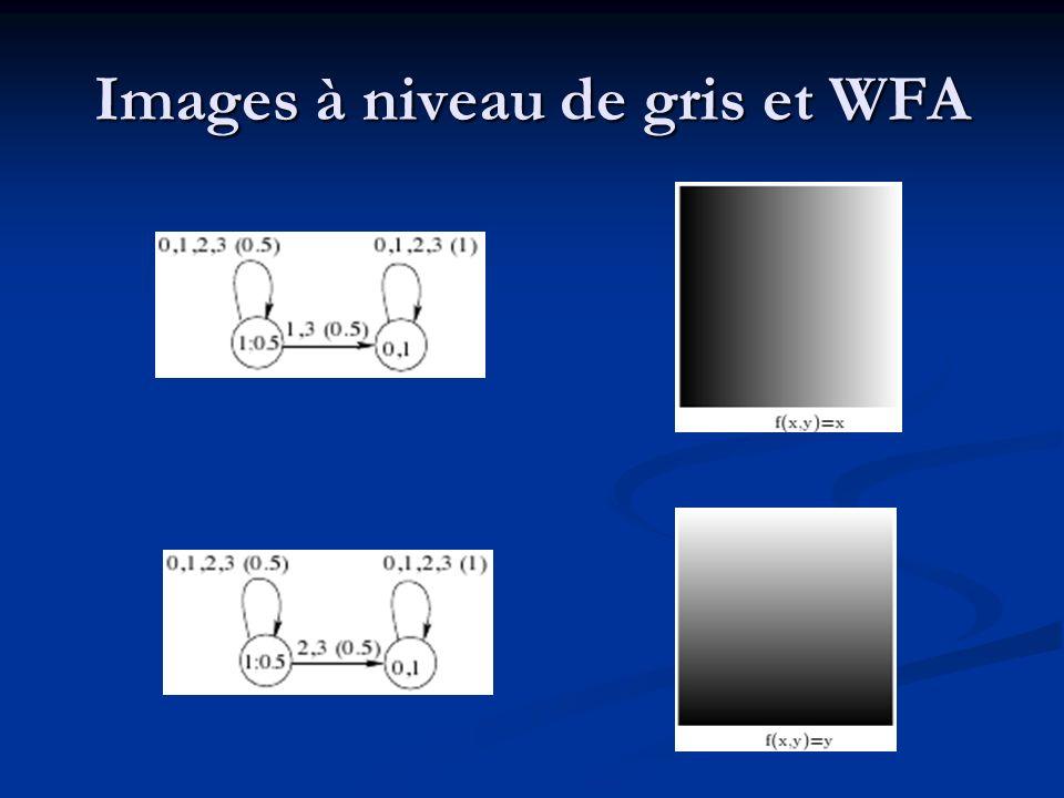 Images à niveau de gris et WFA