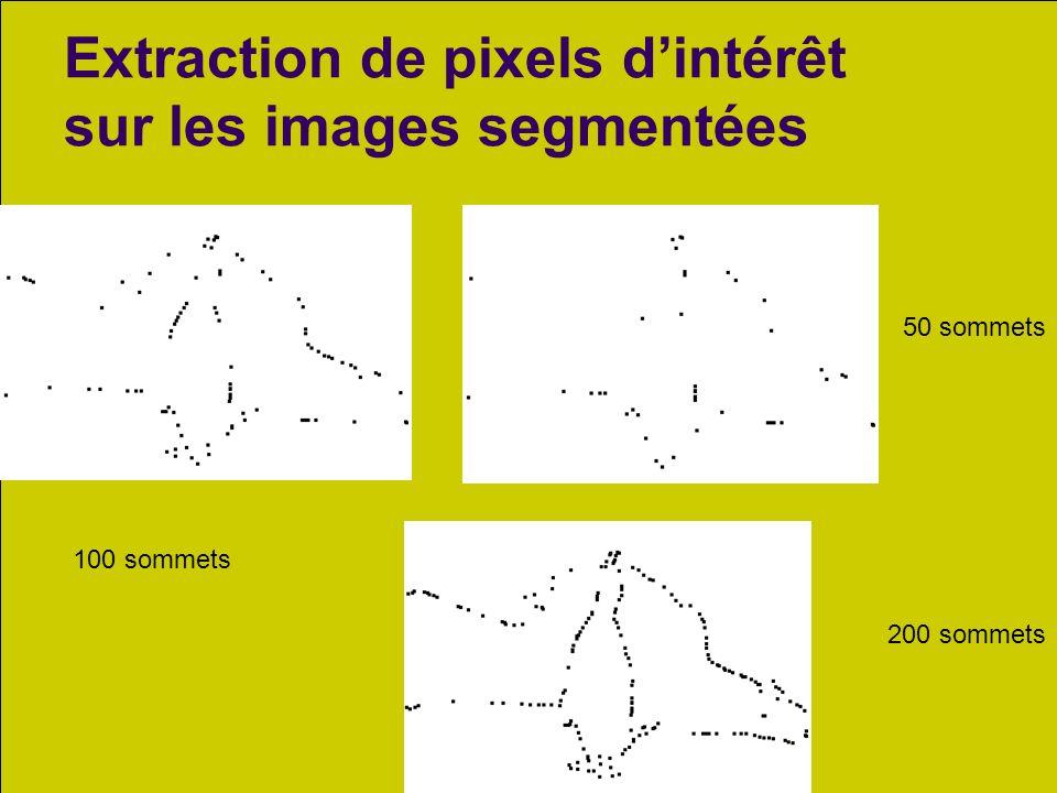 SATTIC, juillet 2010 20 Extraction de pixels dintérêt sur les images segmentées 50 sommets 200 sommets 100 sommets