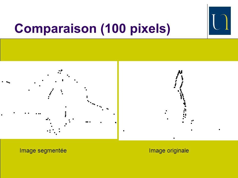 SATTIC, juillet 2010 22 Comparaison (100 pixels) Image segmentéeImage originale