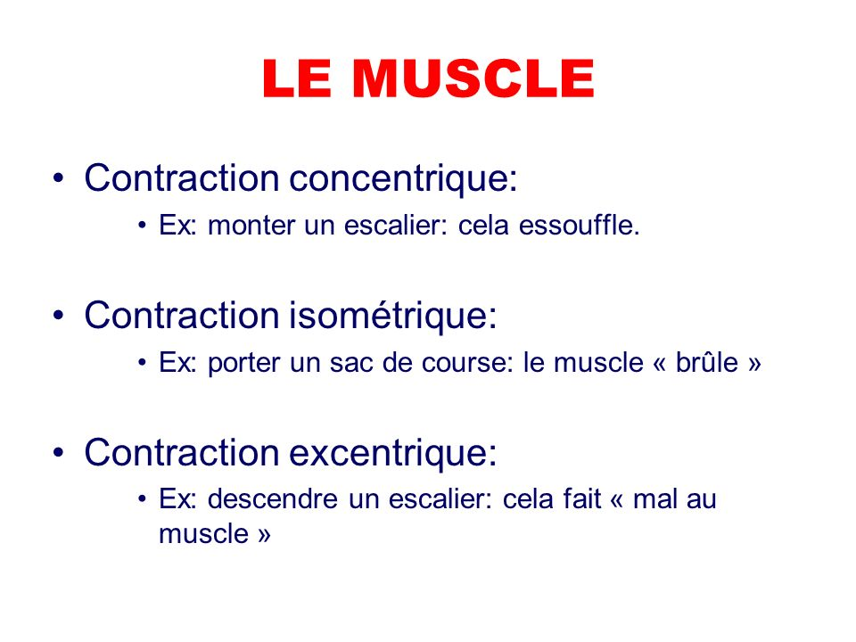 LE MUSCLE Contraction concentrique: Ex: monter un escalier: cela essouffle. Contraction isométrique: Ex: porter un sac de course: le muscle « brûle »