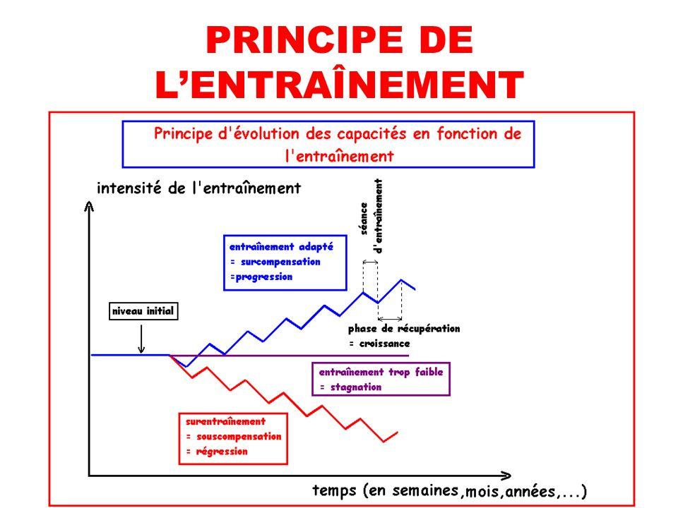 PRINCIPE DE LENTRAÎNEMENT