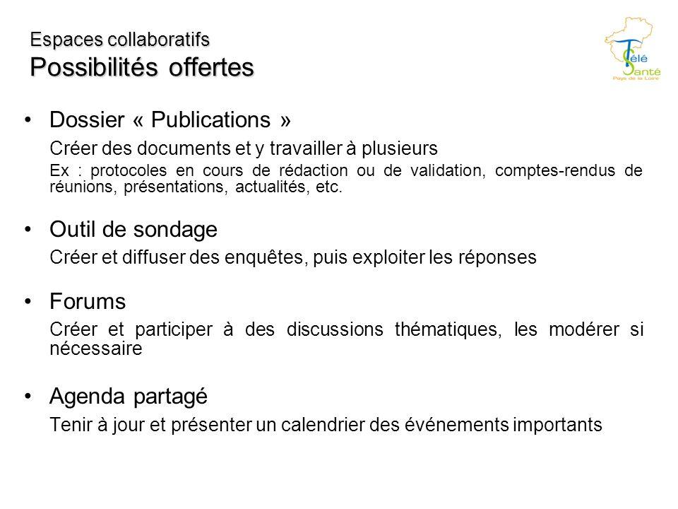 Espaces collaboratifs Possibilités offertes Dossier « Publications » Créer des documents et y travailler à plusieurs Ex : protocoles en cours de rédaction ou de validation, comptes-rendus de réunions, présentations, actualités, etc.