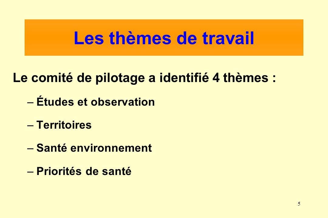5 Les thèmes de travail Le comité de pilotage a identifié 4 thèmes : –Études et observation –Territoires –Santé environnement –Priorités de santé