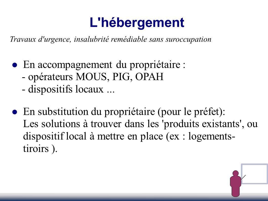 L'hébergement En substitution du propriétaire (pour le préfet): Les solutions à trouver dans les 'produits existants', ou dispositif local à mettre en