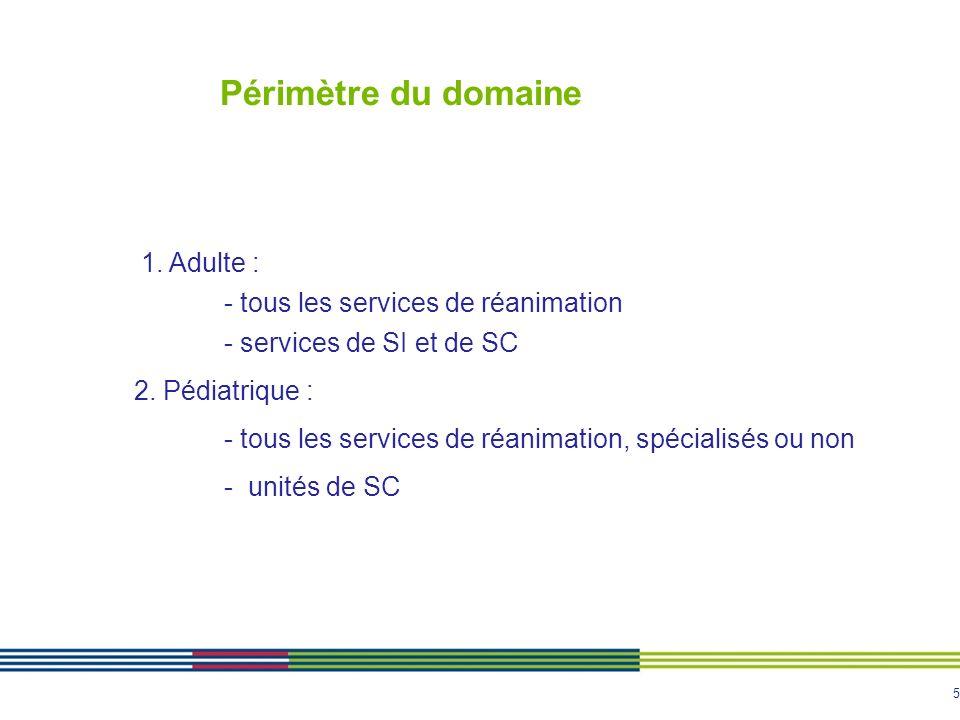 5 Périmètre du domaine 1. Adulte : - tous les services de réanimation - services de SI et de SC 2. Pédiatrique : - tous les services de réanimation, s