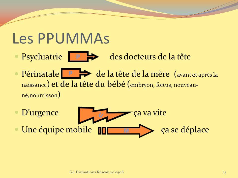 Les PPUMMAs Psychiatrie des docteurs de la tête Périnatale de la tête de la mère ( avant et après la naissance ) et de la tête du bébé ( embryon, fœtu