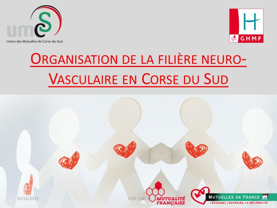 Organisation de la filière neuro-vasculaire en Corse du Sud (1) Un comité de pilotage par des réunions mensuelles de 15 personnes (médecins, neurologues, urgentistes, réanimateurs, médecins rééducateurs, médecin coordonnateur HAD, kinésithérapeutes, infirmières, …), organisent la filière AVC en Corse du Sud depuis 2009.