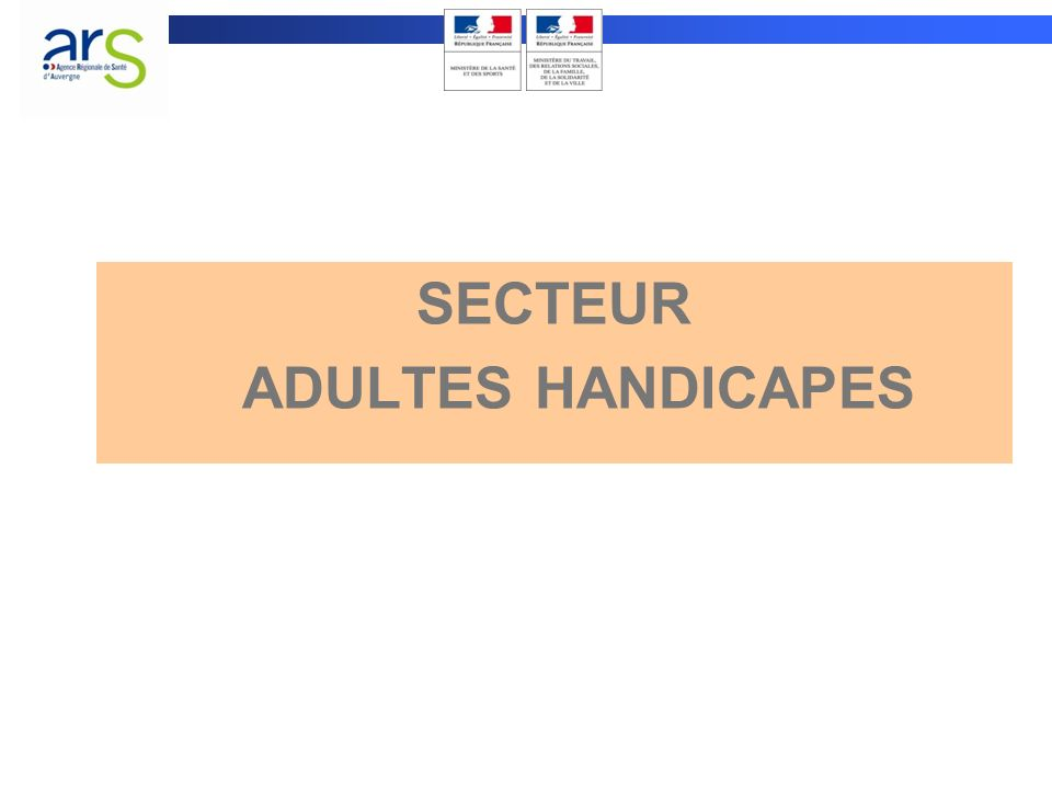 ACCUEIL EN INSTITUTION NOMBRE DE PLACES PROGRAMMEES SUR 2010-2013 SECTEUR ADULTES HANDICAPES