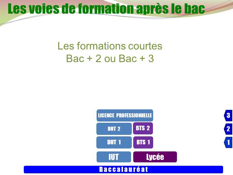 24 IUTLycée B a c c a l a u r é a t DUT 1 DUT 2 BTS 1 LICENCE PROFESSIONNELLE 3 3 2 2 1 1 BTS 2 Les formations courtes Bac + 2 ou Bac + 3