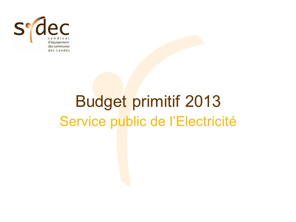 Budget primitif 2013 Service public de lElectricité