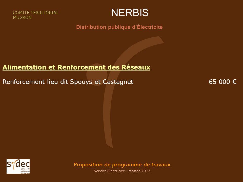 Proposition de programme de travaux Service Electricité – Année 2012 NERBIS Distribution publique dÉlectricité COMITE TERRITORIAL MUGRON Alimentation et Renforcement des Réseaux Renforcement lieu dit Spouys et Castagnet 65 000