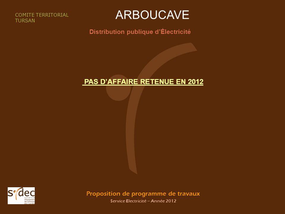 Proposition de programme de travaux Service Electricité – Année 2012 ARBOUCAVE Distribution publique dÉlectricité COMITE TERRITORIAL TURSAN PAS DAFFAIRE RETENUE EN 2012