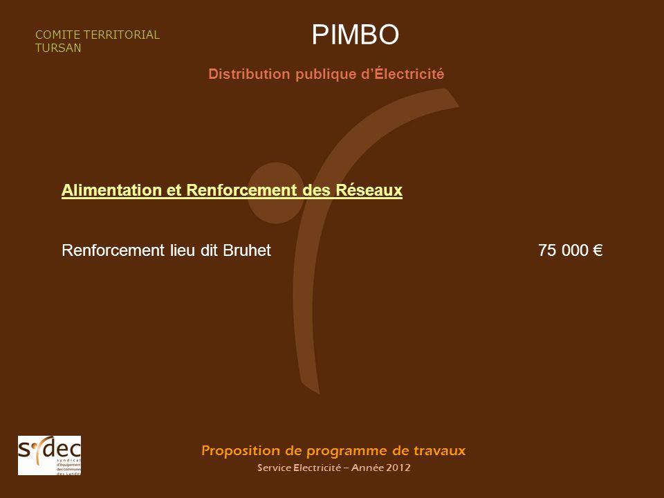 Proposition de programme de travaux Service Electricité – Année 2012 PIMBO Distribution publique dÉlectricité COMITE TERRITORIAL TURSAN Alimentation et Renforcement des Réseaux Renforcement lieu dit Bruhet 75 000
