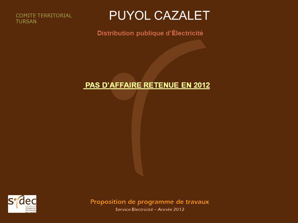 Proposition de programme de travaux Service Electricité – Année 2012 PUYOL CAZALET Distribution publique dÉlectricité COMITE TERRITORIAL TURSAN PAS DAFFAIRE RETENUE EN 2012