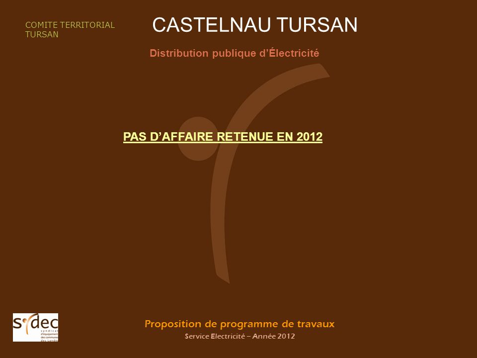 Proposition de programme de travaux Service Electricité – Année 2012 CASTELNAU TURSAN Distribution publique dÉlectricité COMITE TERRITORIAL TURSAN PAS DAFFAIRE RETENUE EN 2012