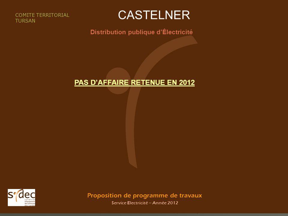 Proposition de programme de travaux Service Electricité – Année 2012 CASTELNER Distribution publique dÉlectricité COMITE TERRITORIAL TURSAN PAS DAFFAIRE RETENUE EN 2012