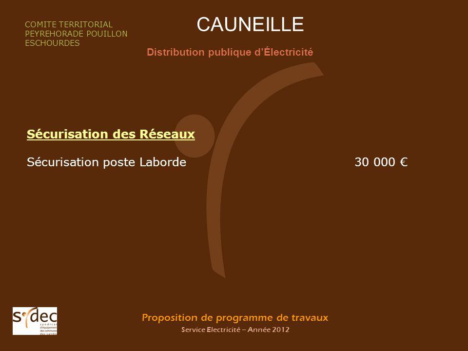 Proposition de programme de travaux Service Electricité – Année 2012 CAUNEILLE Distribution publique dÉlectricité COMITE TERRITORIAL PEYREHORADE POUIL