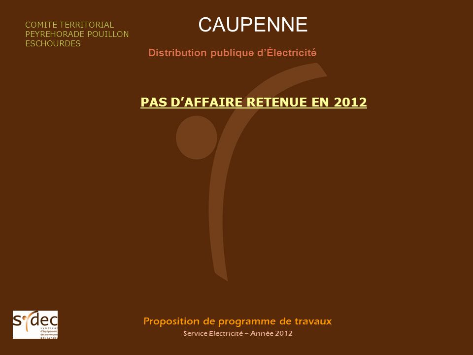 Proposition de programme de travaux Service Electricité – Année 2012 CAUPENNE Distribution publique dÉlectricité COMITE TERRITORIAL PEYREHORADE POUILL