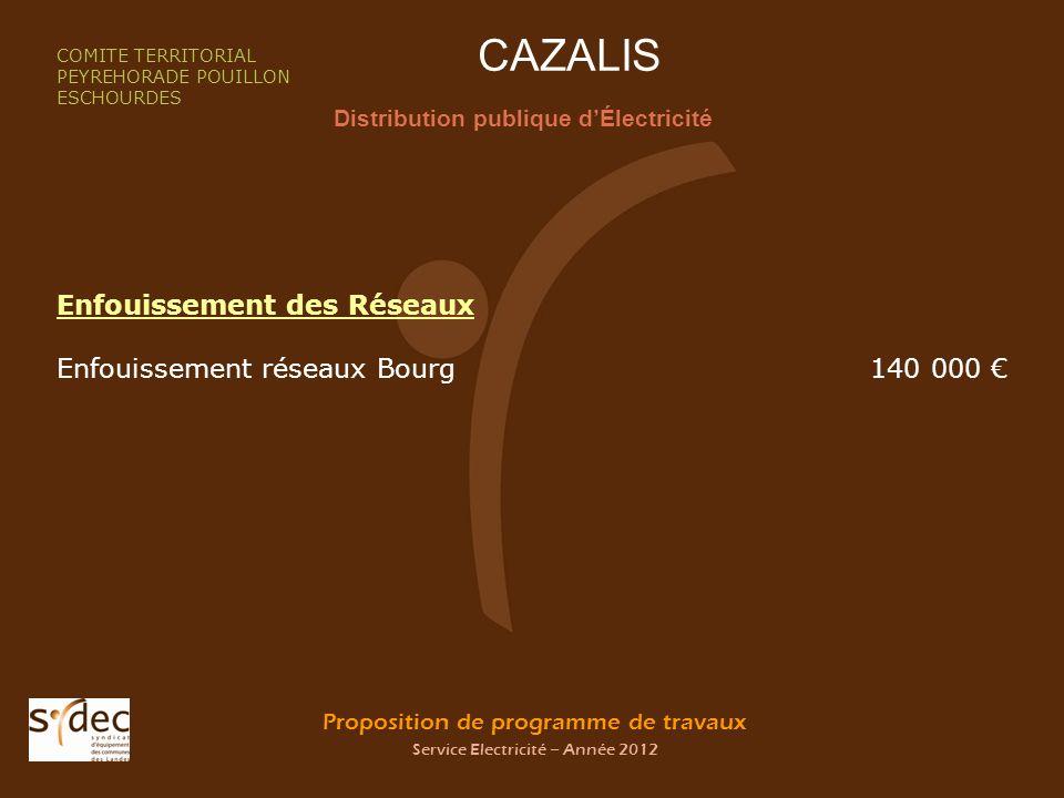 Proposition de programme de travaux Service Electricité – Année 2012 CAZALIS Distribution publique dÉlectricité COMITE TERRITORIAL PEYREHORADE POUILLO