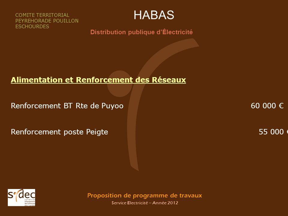 Proposition de programme de travaux Service Electricité – Année 2012 HABAS Distribution publique dÉlectricité COMITE TERRITORIAL PEYREHORADE POUILLON