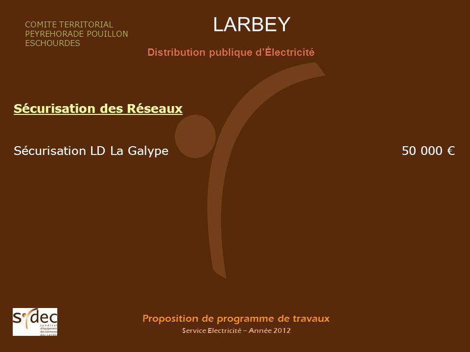 Proposition de programme de travaux Service Electricité – Année 2012 LARBEY Distribution publique dÉlectricité COMITE TERRITORIAL PEYREHORADE POUILLON