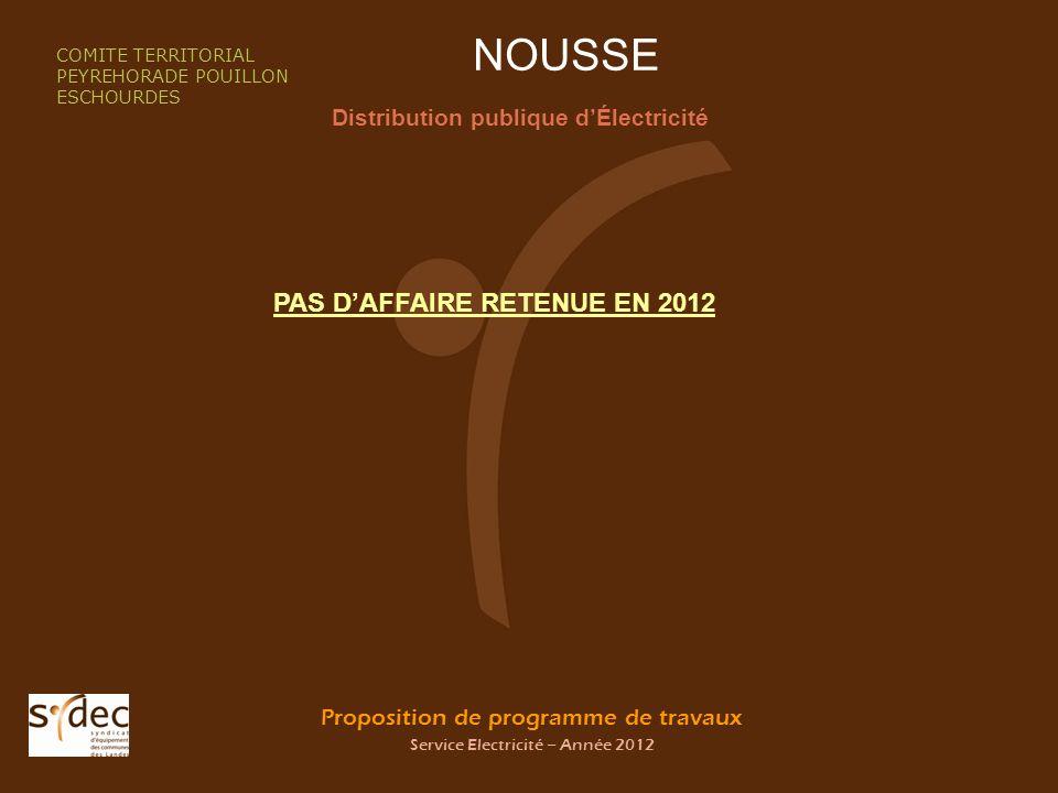 Proposition de programme de travaux Service Electricité – Année 2012 NOUSSE Distribution publique dÉlectricité COMITE TERRITORIAL PEYREHORADE POUILLON