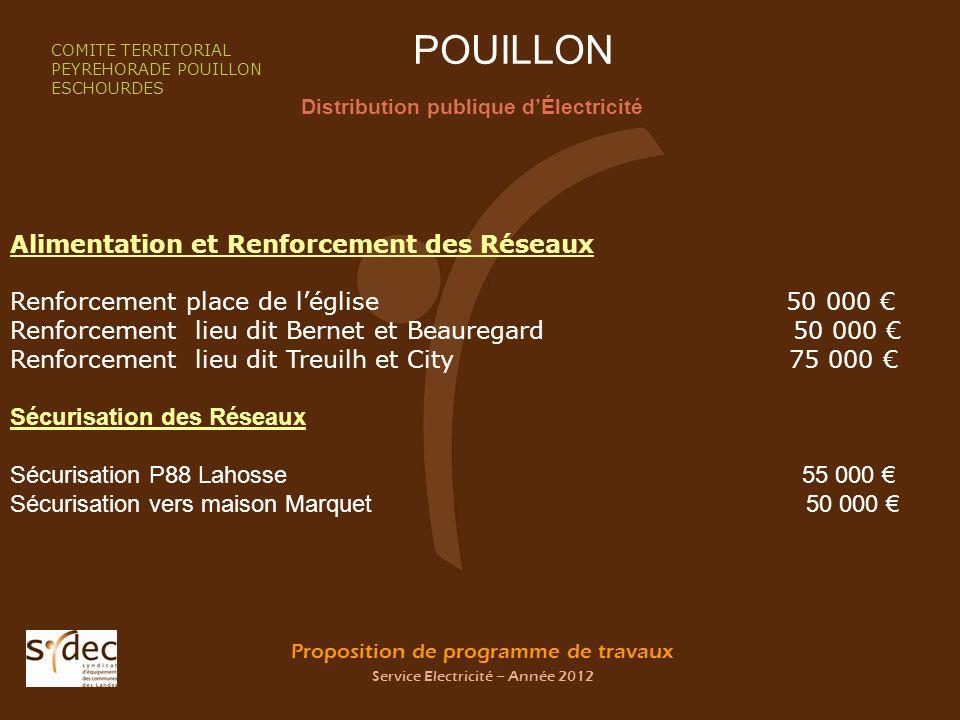 Proposition de programme de travaux Service Electricité – Année 2012 POUILLON Distribution publique dÉlectricité COMITE TERRITORIAL PEYREHORADE POUILL