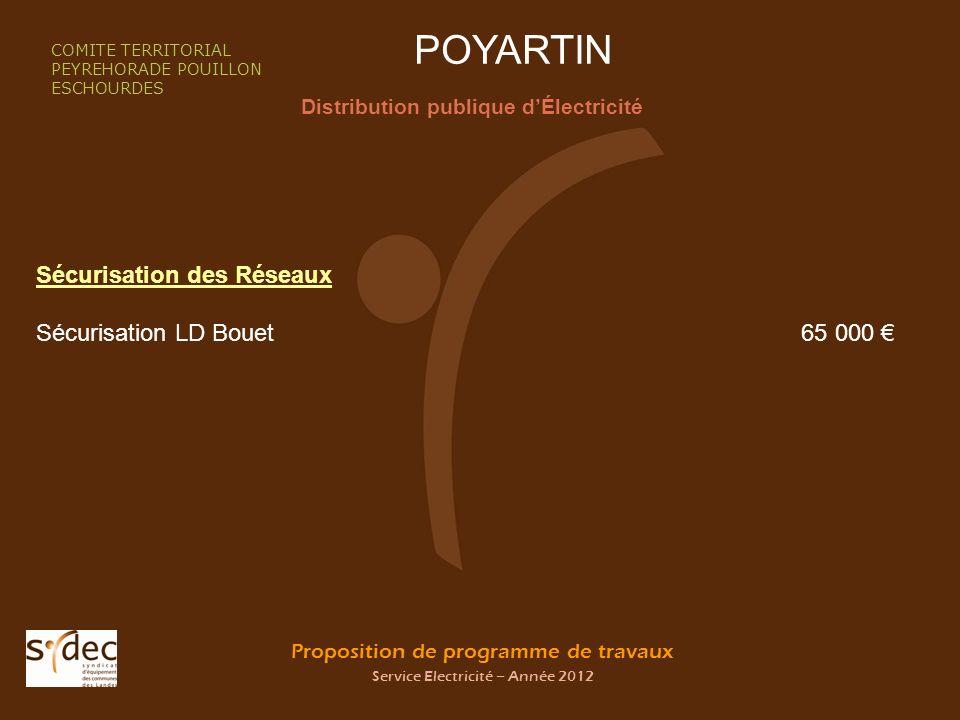 Proposition de programme de travaux Service Electricité – Année 2012 POYARTIN Distribution publique dÉlectricité COMITE TERRITORIAL PEYREHORADE POUILL