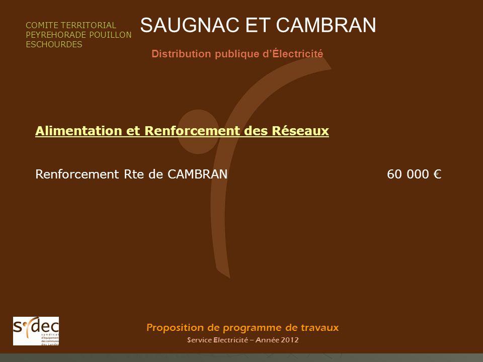 Proposition de programme de travaux Service Electricité – Année 2012 SAUGNAC ET CAMBRAN Distribution publique dÉlectricité COMITE TERRITORIAL PEYREHOR