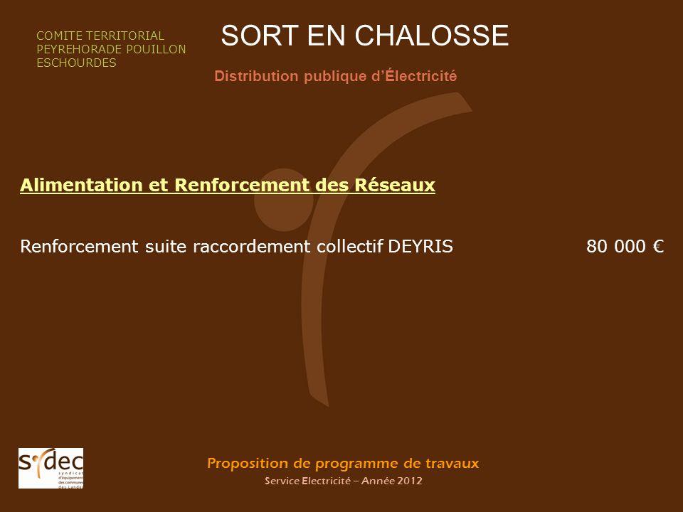 Proposition de programme de travaux Service Electricité – Année 2012 SORT EN CHALOSSE Distribution publique dÉlectricité COMITE TERRITORIAL PEYREHORAD