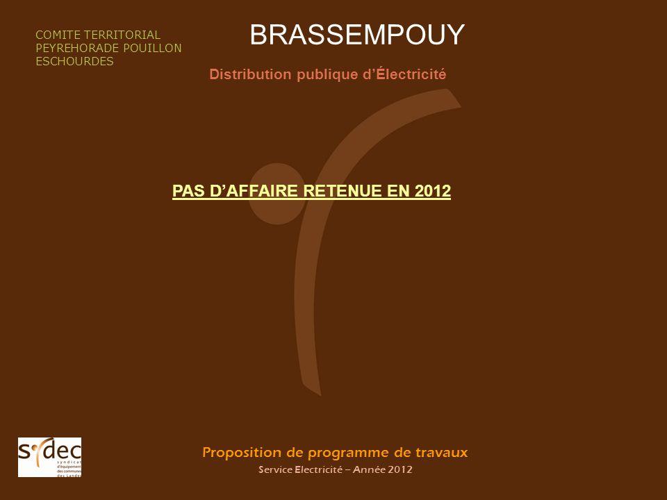 Proposition de programme de travaux Service Electricité – Année 2012 BRASSEMPOUY Distribution publique dÉlectricité COMITE TERRITORIAL PEYREHORADE POU