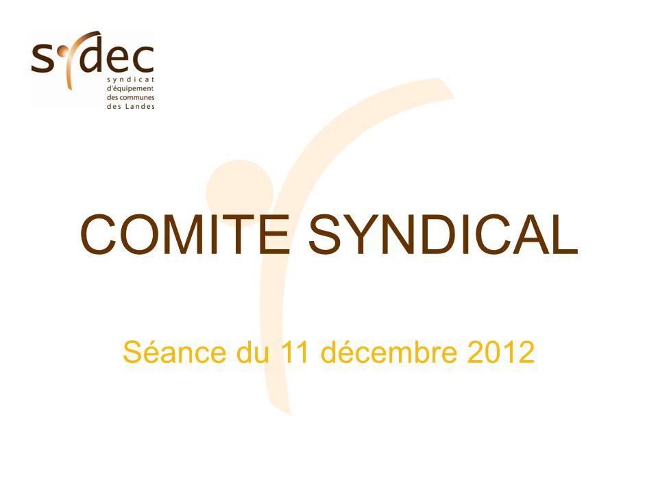 COMITE SYNDICAL Séance du 11 décembre 2012
