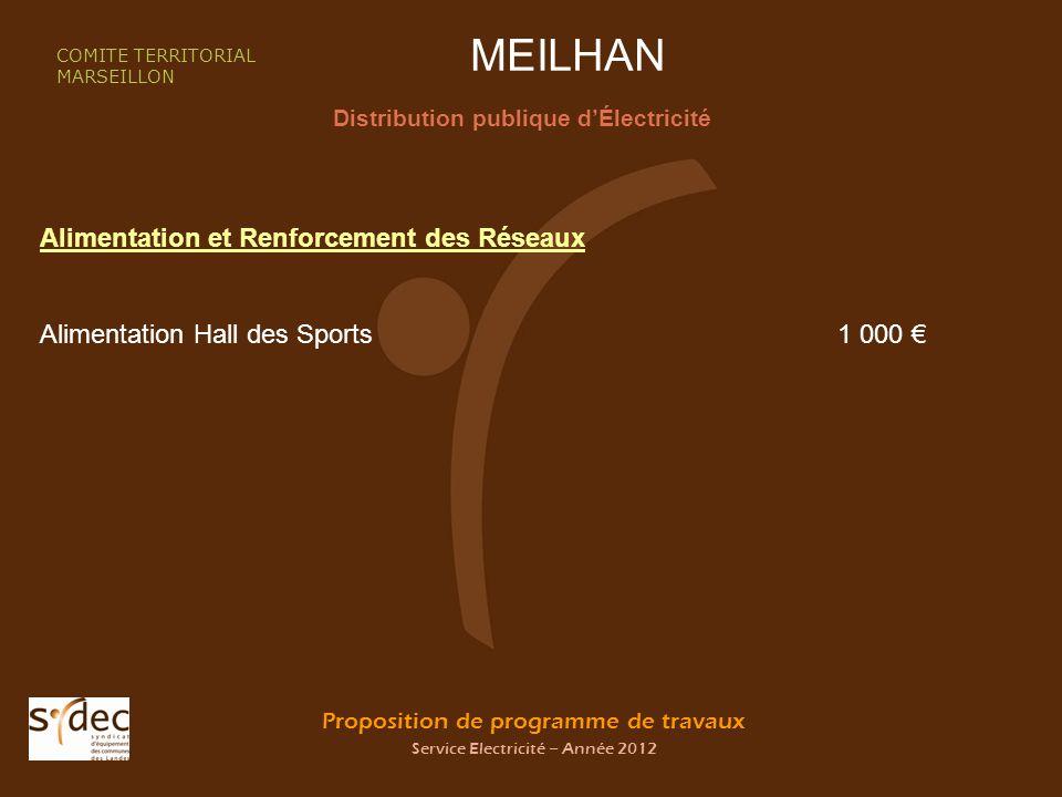 Proposition de programme de travaux Service Electricité – Année 2012 MEILHAN Distribution publique dÉlectricité COMITE TERRITORIAL MARSEILLON Alimenta