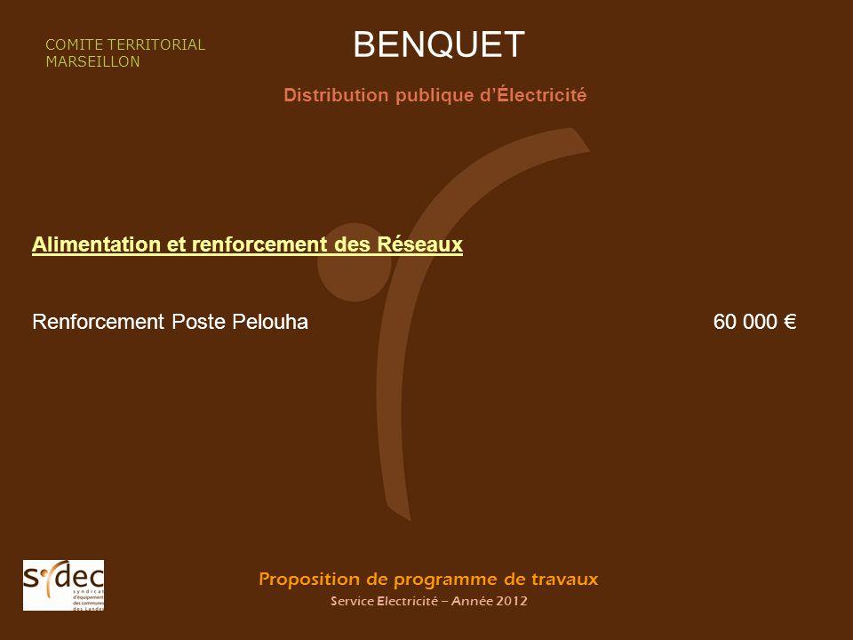 Proposition de programme de travaux Service Electricité – Année 2012 BENQUET Distribution publique dÉlectricité COMITE TERRITORIAL MARSEILLON Alimenta