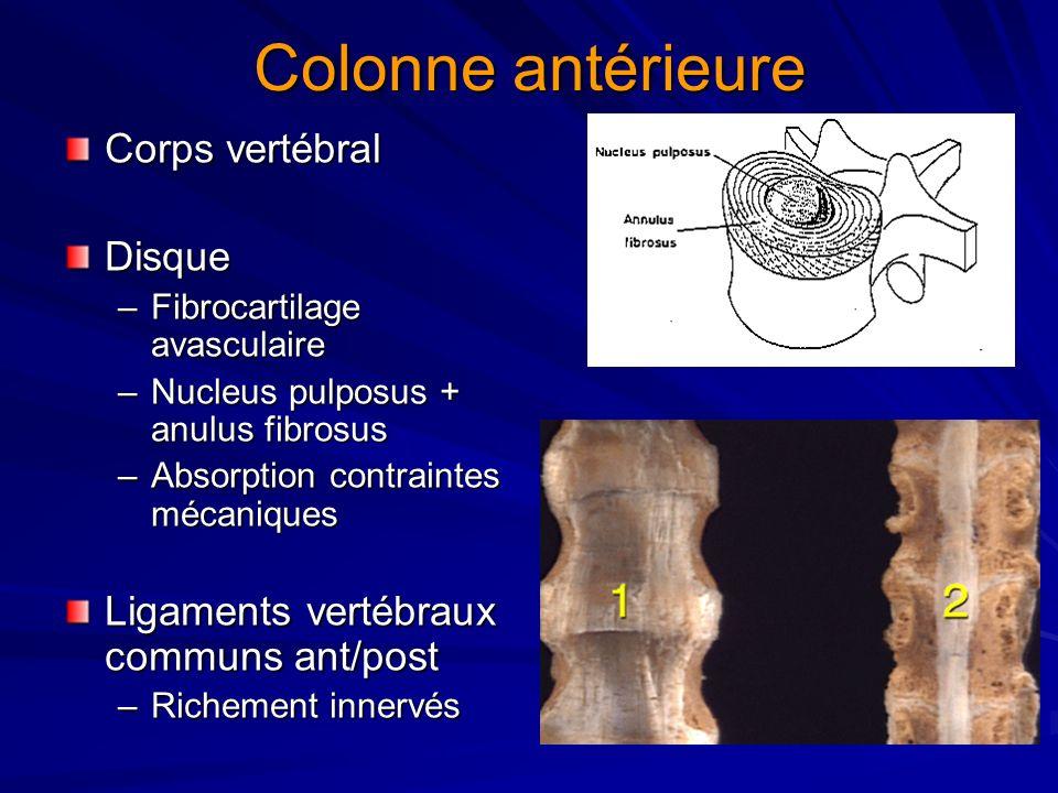 Colonne antérieure Corps vertébral Disque –Fibrocartilage avasculaire –Nucleus pulposus + anulus fibrosus –Absorption contraintes mécaniques Ligaments vertébraux communs ant/post –Richement innervés