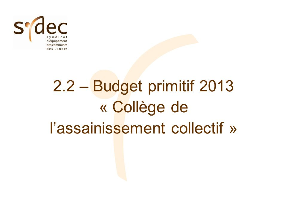 2.2 – Budget primitif 2013 « Collège de lassainissement collectif »