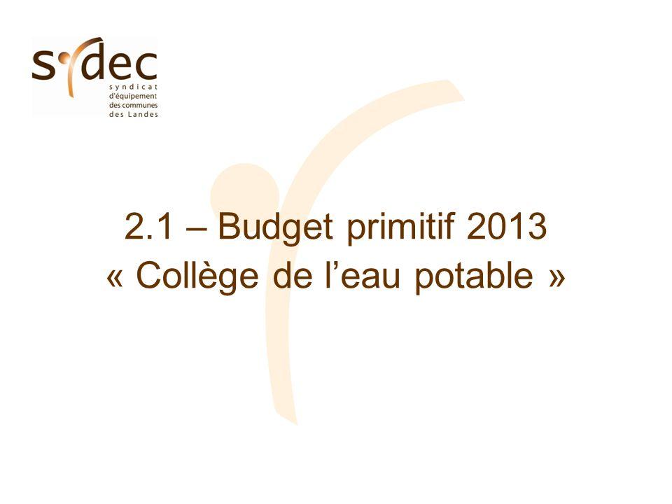 2.1 – Budget primitif 2013 « Collège de leau potable »