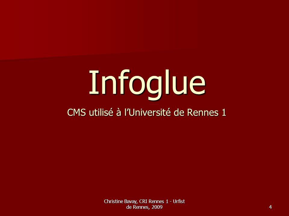 Christine Bavay, CRI Rennes 1 - Urfist de Rennes, 20094 Infoglue CMS utilisé à lUniversité de Rennes 1