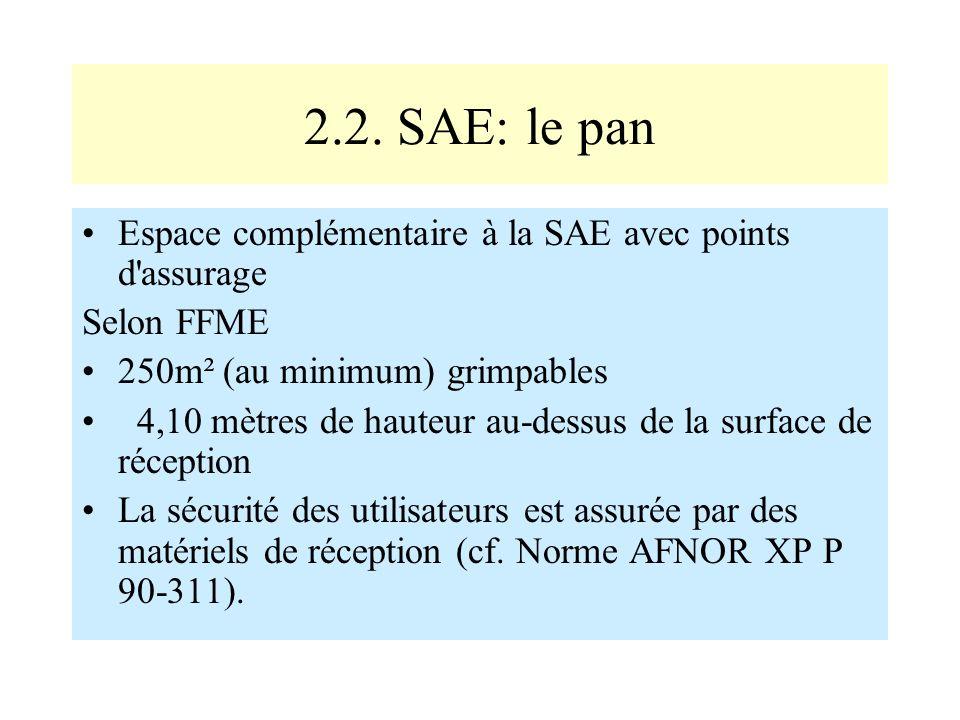 2.2. SAE: le pan Espace complémentaire à la SAE avec points d'assurage Selon FFME 250m² (au minimum) grimpables 4,10 mètres de hauteur au-dessus de la