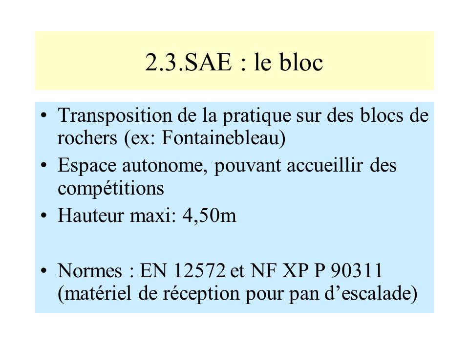 2.3.SAE : le bloc Transposition de la pratique sur des blocs de rochers (ex: Fontainebleau) Espace autonome, pouvant accueillir des compétitions Haute